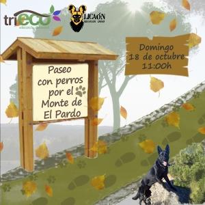 Foto cuadrada_Ruta Canina El Pardo_Portillera