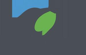 Logo_SEO_horizontal_pequeño